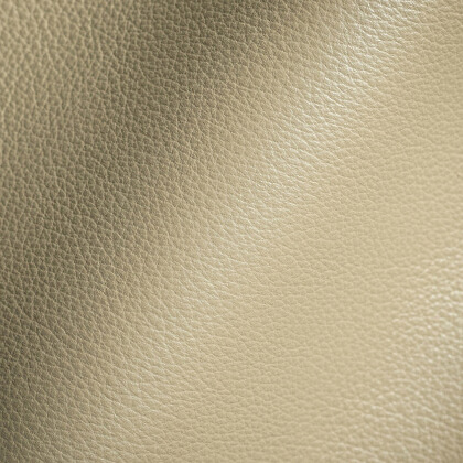 Leather Upholstery Fabric, Drapes India